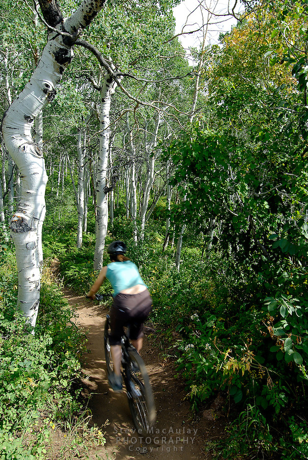 Mountain biking on the trails at Steamboat Springs Resort, Steamboat,  Colorado.