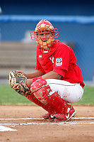 July 1, 2009:  Catcher Ivan Castro of the Batavia Muckdogs during a game at Dwyer Stadium in Batavia, NY.  The Muckdogs are the NY-Penn League Short-Season Class-A affiliate of the St. Louis Cardinals.  Photo By Mike Janes/Four Seam Images