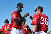 Billings Mustangs Edwin Yon (52) and Victor Ruiz (26) fist bump before a Pioneer League game against the Grand Junction Rockies at Dehler Park on August 15, 2019 in Billings, Montana. Billings defeated Grand Junction 11-2. (Zachary Lucy/Four Seam Images)