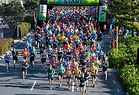 The 2017 Cigna Achilles Round The Bays half marathon, Bluebridge 10km and Fun Run & Walk. From Frank Kitts Park to Kilbirnie Park in Wellington, New Zealand on Sunday, 18 February 2018. Photo: Marty Melville / lintottphoto.co.nz