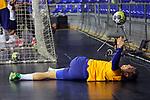 League ASOBAL 2017-2018 - Game: 14.<br /> FC Barcelona Lassa vs Helvetia Anaitasuna: 38-26.<br /> Aleix Gomez.