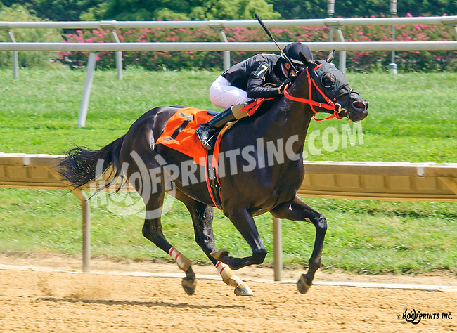 Brothersofthetime winning at Delaware Park on 8/24/16