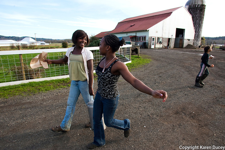 Estrella sisters Melody, 12, (left) and Ruth, 20, carry fresh cream towards the house to make butter at the Estrella Family Creamery in Montesano,Wash.  on November 4, 2010.  The Food and Drug Administration ordered the Estrella Family Creamery in Montesano,Wash.  to stop processing cheeses after it found listeria bacteria on some of the cheeses this year.  The family says they have made many renovations on the farm and the bacteria is only found on the soft cheese, not everything.  They believe they should be allowed to resume making cheese and sell the hard cheeses they have already made at the facility.  The creamery is one of Washington's most famous artisan cheesemakers.  (photo credit Karen Ducey). .