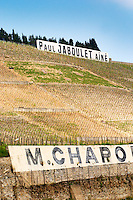 Signs saying Paul Jaboulet Aine and M Chapoutier. The Hermitage vineyards on the hill behind the city Tain-l'Hermitage, on the steep sloping hill, stone terraced. Sometimes spelled Ermitage.  Tain l'Hermitage, Drome, Drôme, France, Europe