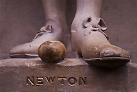 Newton's feet - complete with carved apple - at the Oxford Museum of Natural History.