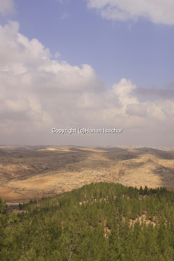 Israel, Southern Hebron Mountain, a view from Yatir Forest Scenic Route .