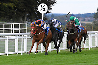 Winner of The Venture Security Handicap Stakes Molly Shaw (11 green) ridden by Jack Mitchell and trained by Chris Wall        during Horse Racing at Salisbury Racecourse on 11th September 2020