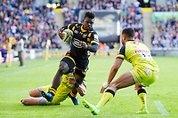 Wasps v Leicester Tigers : 20.05.17