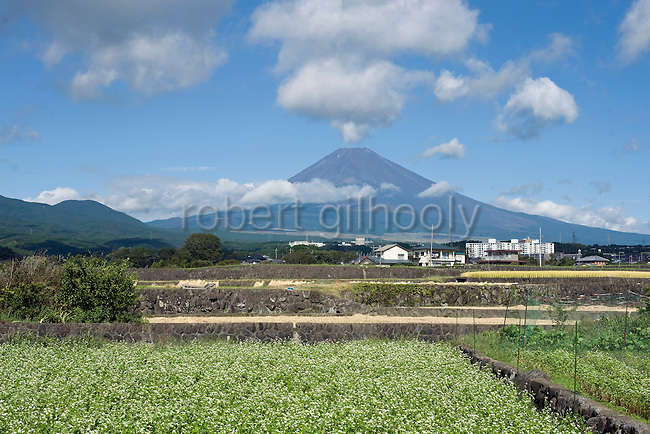 Mt Fuji is seen from Fujinomiya City, Shizuoka Prefecture Japan on 01 Oct. 2012.  Photographer: Robert Gilhooly