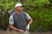 Tiger Woods (USA) watches his tee shot on 5 during day 4 of the WGC Dell Match Play, at the Austin Country Club, Austin, Texas, USA. 3/30/2019.<br /> Picture: Golffile | Ken Murray<br /> <br /> <br /> All photo usage must carry mandatory copyright credit (© Golffile | Ken Murray)