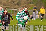 Darren O'Doherty Killarney Celtic