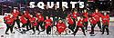 2015 - 2016 West Sound Hockey Club