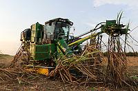 ANGOLA Malange , Biocom Project, joint venture of Brazil company Odebrecht and Angolian state oil company Sonangol, sugar factory and large farm for production of sugar cane for 240.000 tons sugar and 30billion litre bio ethanol, John Deere tractor combine harvester at sugar cane harvest / ANGOLA Malange , Biocom Projekt, Joint venture zwischen Konzern Odebrecht aus Brasilien und Sonangol, staatliche Oelgesellschaft Angolas, und weiteren Investoren u.a. Tocher des Praesidenten Dos Santos, auf einigen tausend Hektar wird Zuckerrohr fuer Produktion von Zucker und Bioethanol angebaut, die Zuckerfabrik ist im Bau und soll 240.000 Tonnen Zucker pro Jahr herstellen, dazu kommen 30 Millionen Liter Ethanol und 70 Megwatt Strom aus Bagasse von einem Biomassekraftwerk, Plantage und Zuckerfabrik sollen 1470 Menschen beschaeftigen, John Deere Erntemaschine bei Ernte von Zuckerrohr