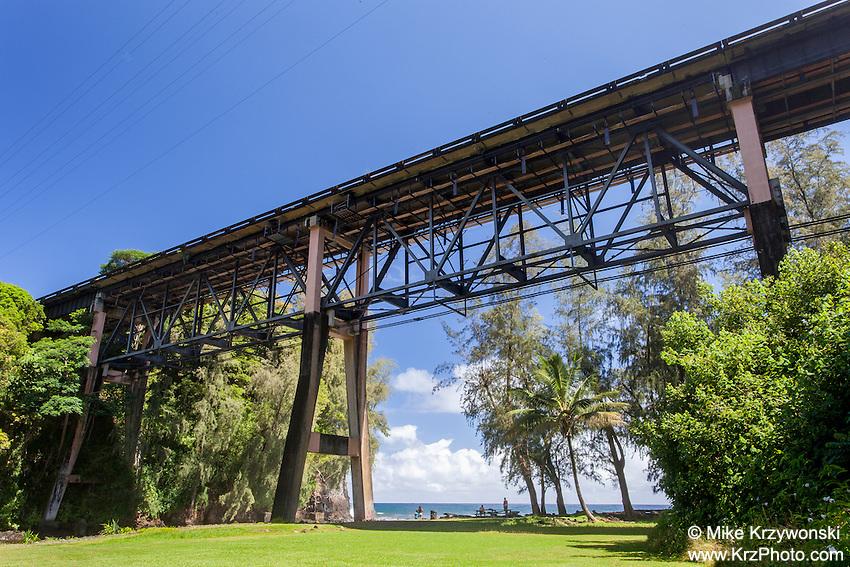 Large bridge over Kolekole Beach Park in Honomu, Big Island, Hawaii