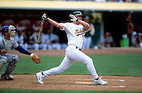OAKLAND, CA - Jason Giambi of the Oakland Athletics bats during a game against the Toronto Blue Jays at the Oakland Coliseum in Oakland, California on August 1, 2000. Photo by Brad Mangin