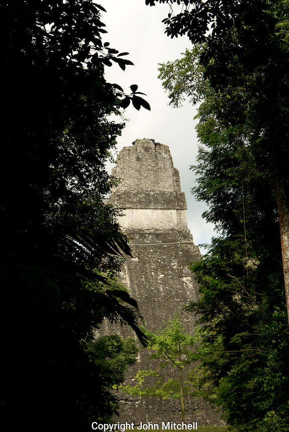 Maya ruins of Tikal, El Peten, Guatemala. Tikal is a UNESCO World Heritage Site....