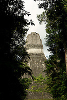 Maya ruins of Tikal, El Peten, Guatemala. Tikal is a UNESCO World Heritage Site....