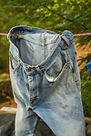 Blue jeans hanging on laundry line.
