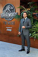 "LOS ANGELES - JUN 12:  Chris Pratt at the ""Jurassic World: Fallen Kingdom"" Premiere at the Walt Disney Concert Hall on June 12, 2018 in Los Angeles, CA"