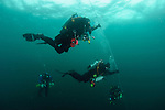 Divers decompressing avoid the passing jellyfish
