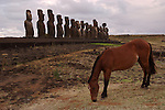 Ahu Tongariki is the largest Ahu on Rapa Nui/Easter Island (a Chilean island in the Pacific). Its Moai were toppled during the island's civil wars and in the twentieth century the Ahu was swept inland by a tidal wave. It has since been restored and has 15 Moai including an 86 tonne moai that was the heaviest ever erected on the island.<br /> Ahu Tongariki was substantially restored in the 1990s by a multidisciplinary team headed by archaeologists Claudio Cristino (Director) and Patricia Vargas (Co-director executive team), in a five years project carried out under an official agreement of the Chilean Government with Tadano Lt. and the University of Chile.