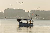 Europe/France/Provence-Alpes-Côte d'Azur/Alpes-Maritimes/Cannes: Pointu de retour de pêche au vieux port à l'aube // Europe, France, Provence-Alpes-Côte d'Azur, Alpes-Maritimes, Cannes:  Pointu, local bat back from fishing to the old port at dawn