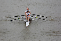 Crew: 239   WLT-JACKSON    Walton Rowing Club    Mx MasB/C 2x Champ <br /> <br /> Pairs Head 2017<br /> <br /> To purchase this photo, or to see pricing information for Prints and Downloads, click the blue 'Add to Cart' button at the top-right of the page.