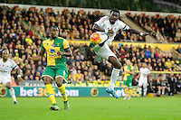 Sebastien Bassong of Norwich City looks on as Bafetimbi Gomis of Swansea City shoots on goal during the Barclays Premier League match between Norwich City and Swansea City played at Carrow Road, Norwich on November 7th 2015