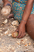 Aldeia Baú, Para State, Brazil. Kayapo woman breaking open a babassu nut using a wooden mallet.