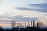 Europa, DEU, Deutschland, Nordrhein Westfalen, NRW, Rheinland, Niederrhein, Naturschutzgebiet Dueffel, Daemmerung, Morgens, Wolken, , Kategorien und Themen, Architektur, Architektonisch, Architekturfoto, Architekturfotografie, Gebaeude, Bauwerk, Natur, Naturfoto, Naturfotos, Naturfotografie, Naturphoto, Naturphotographie......[Fuer die Nutzung gelten die jeweils gueltigen Allgemeinen Liefer-und Geschaeftsbedingungen. Nutzung nur gegen Verwendungsmeldung und Nachweis. Download der AGB unter http://www.image-box.com oder werden auf Anfrage zugesendet. Freigabe ist vorher erforderlich. Jede Nutzung des Fotos ist honorarpflichtig gemaess derzeit gueltiger MFM Liste - Kontakt, Uwe Schmid-Fotografie, Duisburg, Tel. (+49).2065.677997, archiv@image-box.com, www.image-box.com]