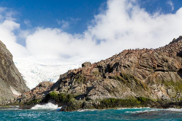 Point Wild, Antarcica