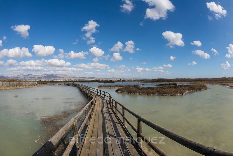 Natural Park El Hondo, Elche , Alicante province, Spain