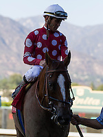 Maui Mark and Garrett Gomez winner of the Donald Valpredo Cal Cup Sprint at Santa Anita Park in Arcadia, California on October 13, 2012.