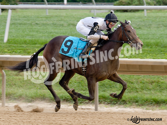 Speckles winning at Delaware Park on 9/14/13