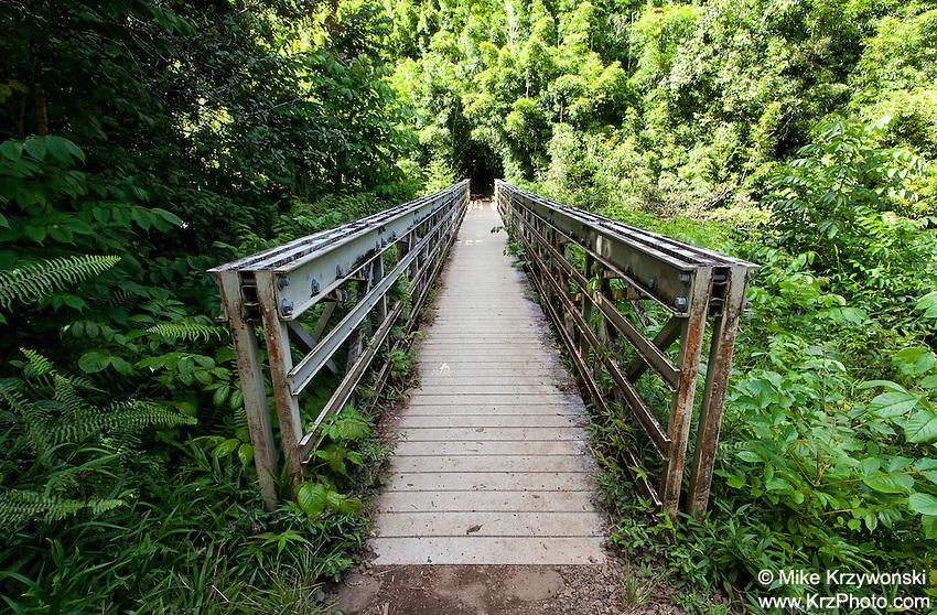 Bridge walkway on the Pipiwai hiking trail, Haleakala National Park, Kipahulu, Maui