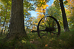 Wagon wheels just outside of the Boundary Waters Canoe Area which is a million square acres of camping , hiking and canoeing wilderness, in northern Minnesota.