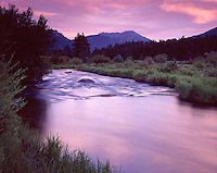 The Big Thompson River flows to the east as pre-dawn light paints the sky pink in Rocky Mountain Natiional Park in Colorado