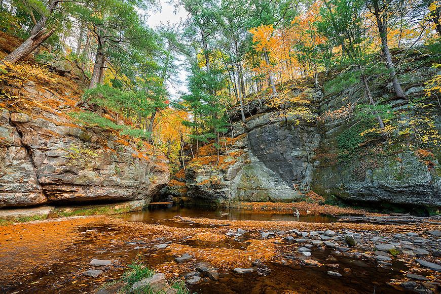 Michael Knapstein's image of Pewit's Nest Natural Area was a winner in a photography contest from the Friends of Wisconsin State Parks and was published in the organizations 2016 calendar.