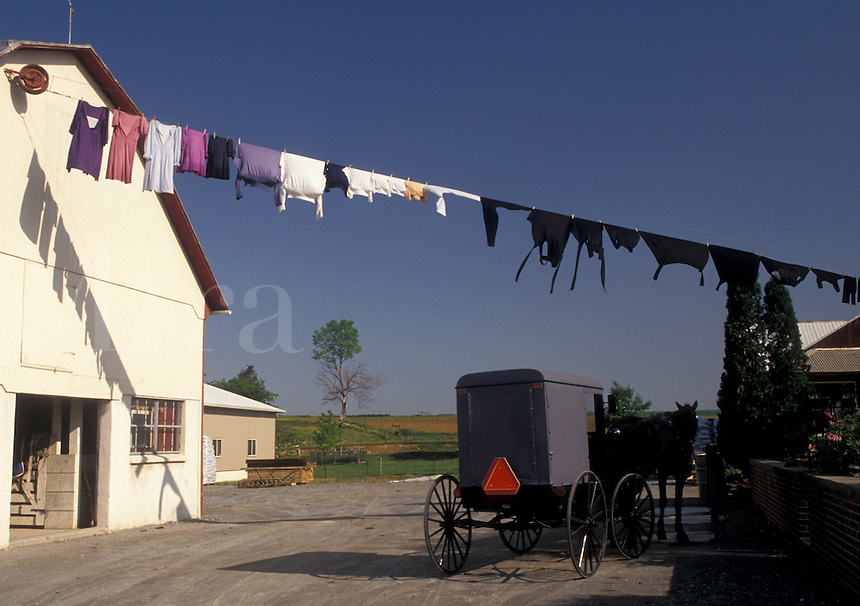 AJ4275, Amish, laundry, Amish Country, Lancaster County, Pennsylvania, Laundry hanging on a clothesline to dry on an Amish farm in Pennsylvania Dutch Country in Lancaster County in the state of Pennsylvania.