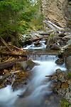 Idaho, North, Kaniksu National Forest, Nordman. Granite Creek and Falls.
