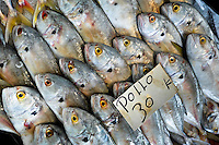 Fish named 'pollo' is seen for sale at the seafood and fish market in Veracruz, Mexico, 29 June 2015.