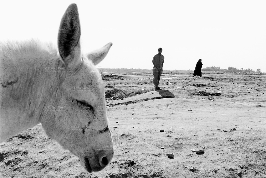Iraq. Kufa. 15 km from Najaf. A couple (man and woman) and a donkey near the Muslem Bin Akel mosque. 27.02.04 © 2004 Didier Ruef .
