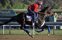 Qushchi, trained by Graham Motion, trains for the Breeders' Cup Filly & Mare Turf at Santa Anita Park in Arcadia, California on October 30, 2013.