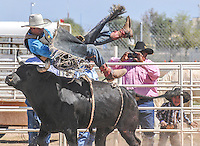SACATON JR RODEO