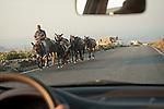 Drive-by donkey shooting, Santorini, Greece
