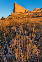 Scotts Bluff National Monument, Nebraska: Prairie grasses and Scotts Bluff at sunrise.