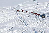 Wade Marrs on the Yukon river at Grayling during Iditarod 2009