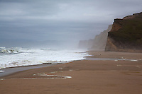 Morning fog not yet burned off hovers over the ocean, sand and bluffs at Pescadero State Beach on California's coast.