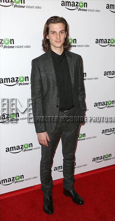 Peter Vack attending the Amazon Red Carpet Premiere for 'Mozart in the Jungle' at Alice Tully Hall on December 2, 2014 in New York City.