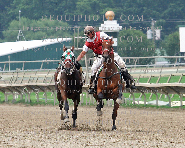 Action at Parx Racing in Bensalem, Pennsylvania August 7, 2012. Outrider Sherry Harrington catches loose horse. Photo By Barbara Weidl/EQUI-PHOTO.